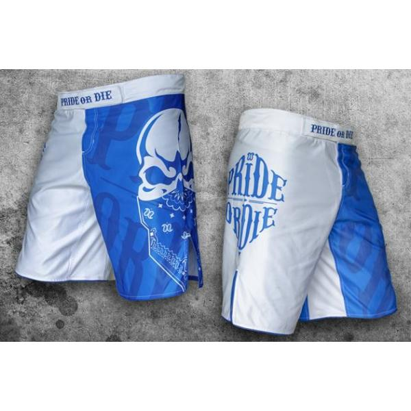 Image of   Pride Or Die MMA Shorts Reckless